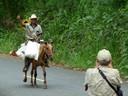Neighbor on horseback