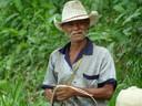 Panamanian horseman